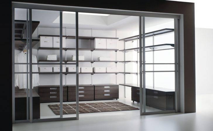 Contemporary Closet Carpet Glass Sliding Doors