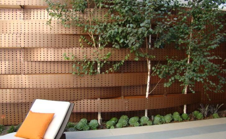 Contemporary Landscape Fenceline Landscaping Design Randy