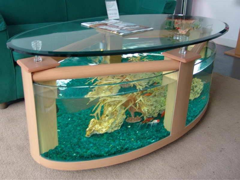 Cool Fish Tanks Home Best Pics
