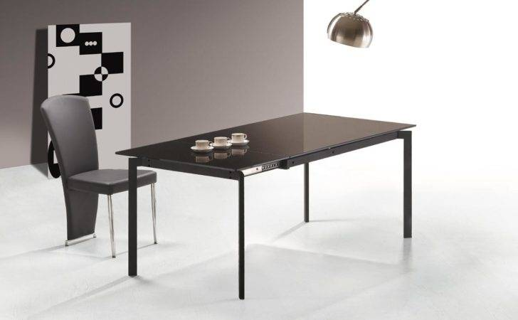 Cool Modern Dining Room Table Extension