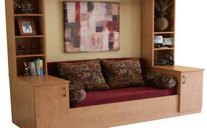 Cool Murphy Bed Sofa Stroovi