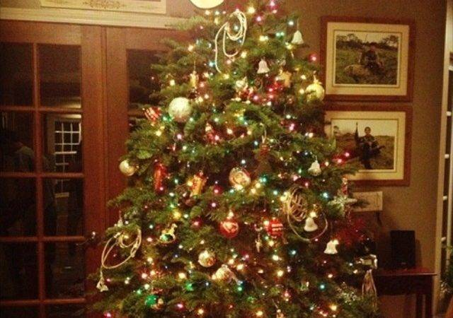 Cowboy Christmas Future Tree Get Own Place