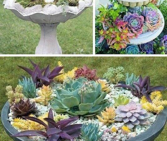 Creative Garden Container Ideas Bird Bath Planters