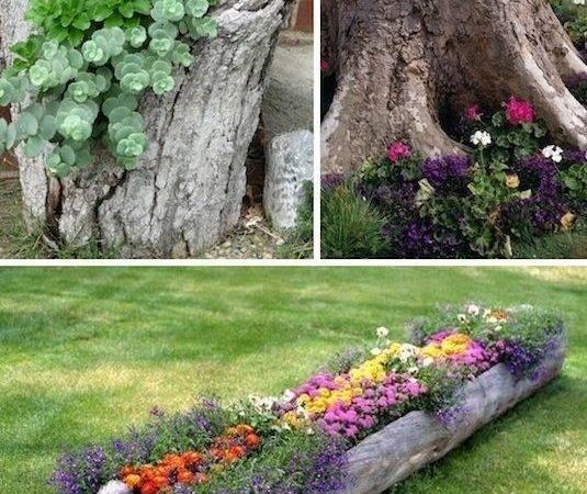 Creative Garden Container Ideas Tree Stumps Logs