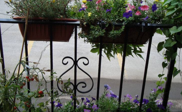 Creative Potted Plants Balcony Plans