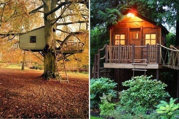 Creative Tree House Ideas Around World Curious Funny Photos