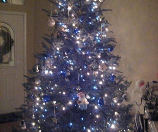 Dallas Cowboys Christmas Tree Dcb Football Pinterest