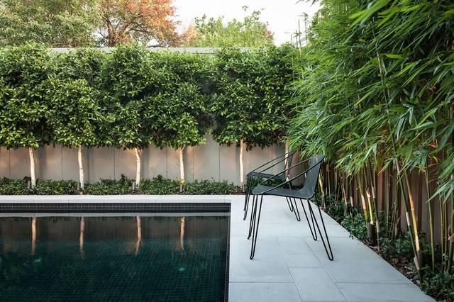 Ddb Design Exteriors Pools Contemporary Pool Melbourne