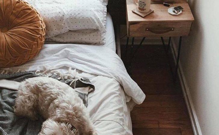 Decor Bedrooms Bedroom Goals Inspo Future Urban Room