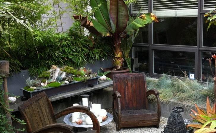 Decorating Ideas Landscape Tropical Design