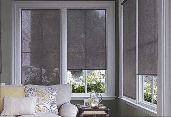 Decorating Sun Blocking Window Shades Inspiring Photos