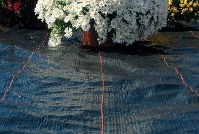 Dewitt Year Weed Barrier Landscape Fabric Feet