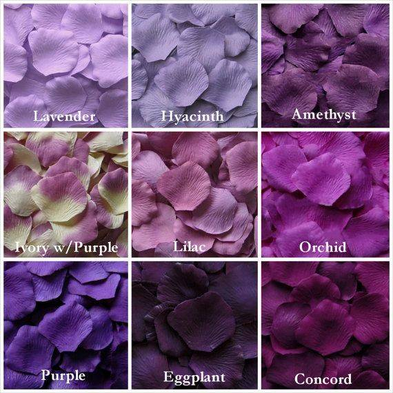 Different Shades Purple Their Names Ideas