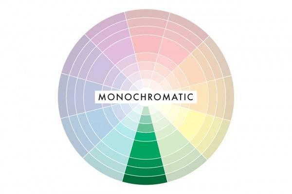 Digital Safari Academy Color Harmonies