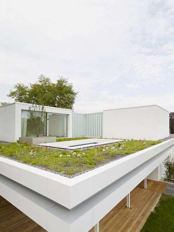 Distinct Simple Rooftop Garden House Home
