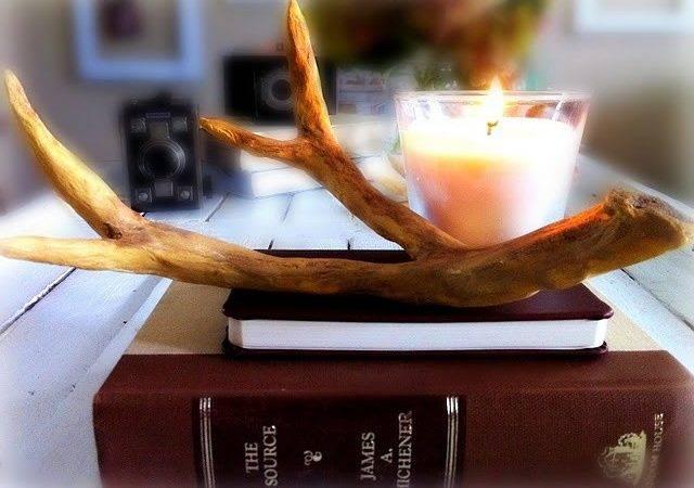 Diy Deer Antlers Pinterest