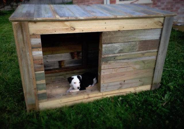 Diy Dog House Ideas Crafty Not Lovers
