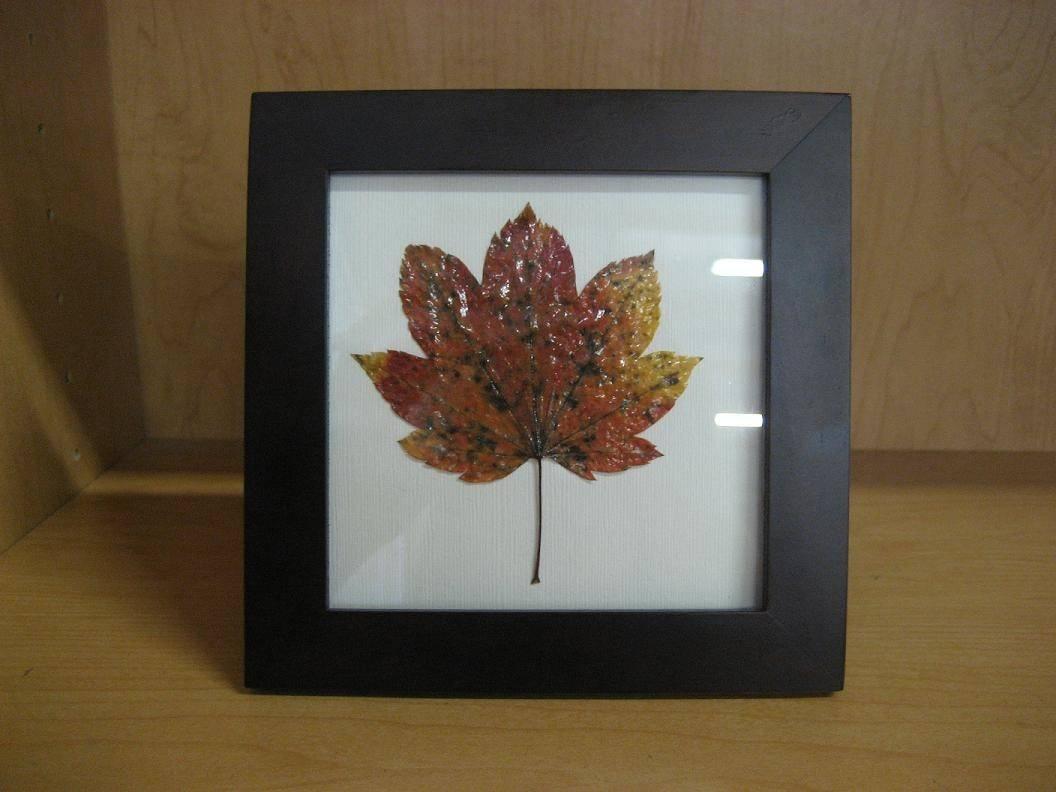 Diy Frame Autumn Leaves Cash Books Blog