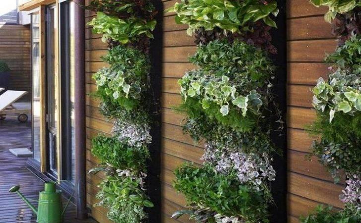 Diy Vertical Garden Systems Gardens Kit