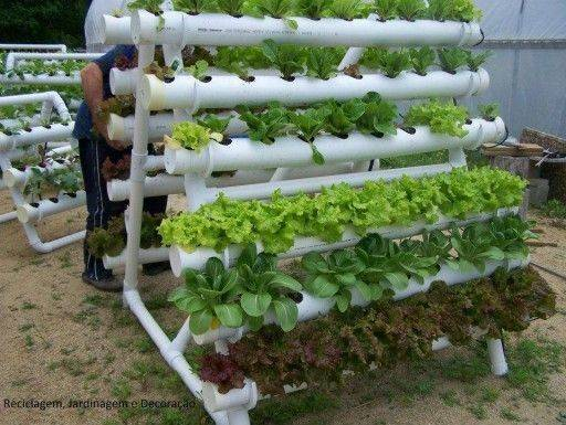 Diy Vertical Garden Systems Vegetable