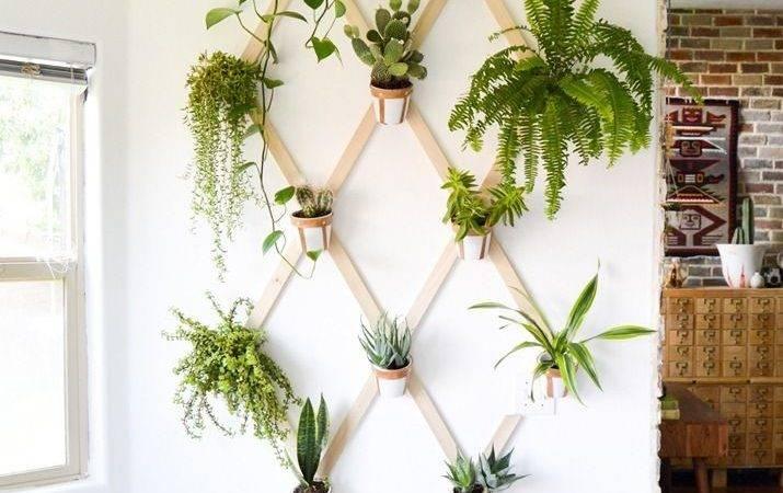 Diy Wall Planters Teach Greenify Your Home