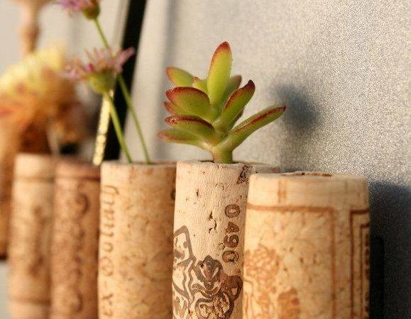 Diy Wine Cork Magnet Planter Pencil Holder