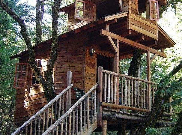 Draw Trees Addition Cool Tree House One Treehouse Designs