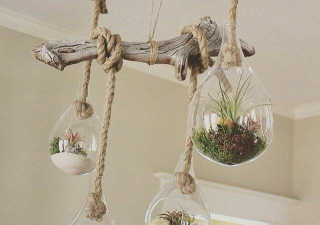 Driftwood Projects Pinterest Crafts