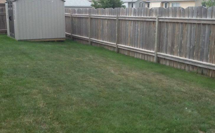 Drive Thru Extension Backyard Patio
