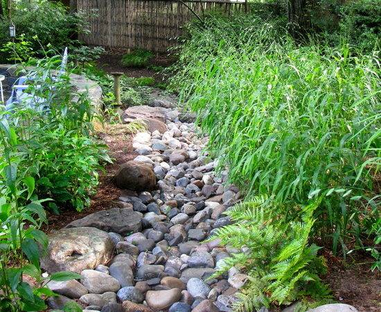 Dry Creek Bed Design Ideas Your Garden Lookbook Style Estate