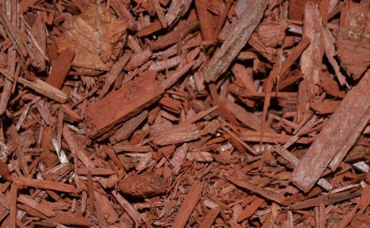 Dyed Mulches Great Alternatives Natural Products