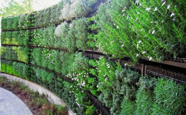 Edible Vertical Gardens Elmich Green Walls