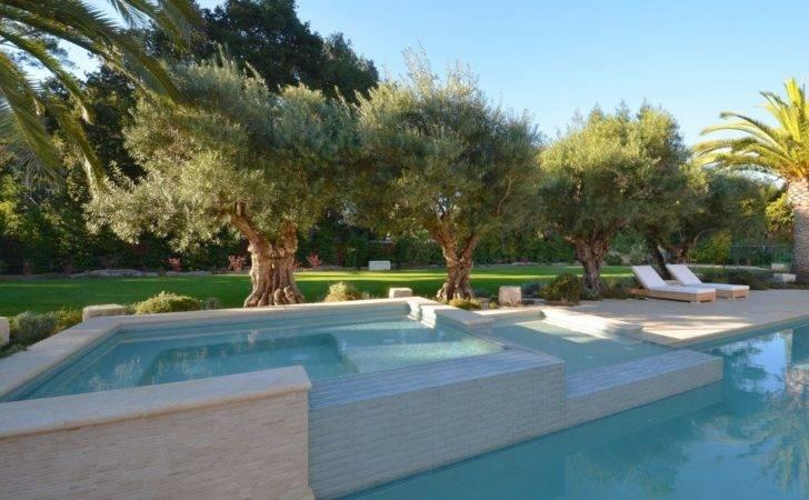 Elegant Pool Designs Journal Dering Hall