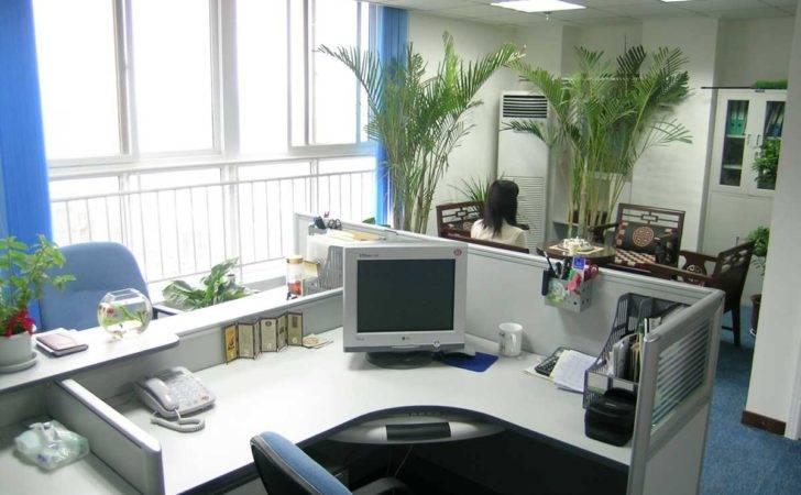 Elegant Welcoming Office Environment Design