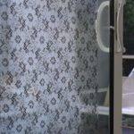 Emma Jeffs Lace Adhesive Window Film