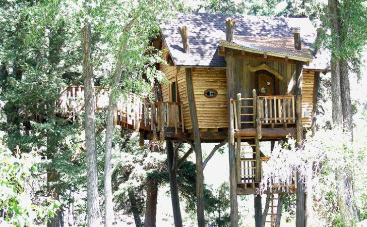 End Spectrum Most Our Treehouse Designs Low Cost