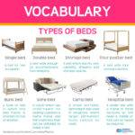 English Lebrija Language Snippets Types Bed