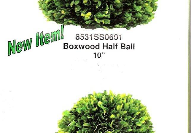 Enlarge New Item Preserved Boxwood Half Balls Two