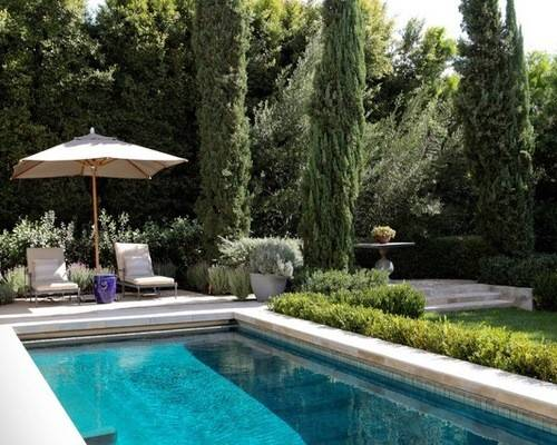 Example Tuscan Rectangular Lap Pool Design Los Angeles