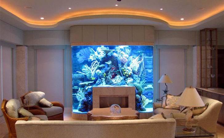 Exotic Fish Tanks Becuo