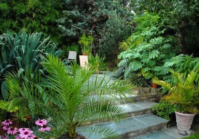 Exotic Tropical Patio Agit Garden Collections