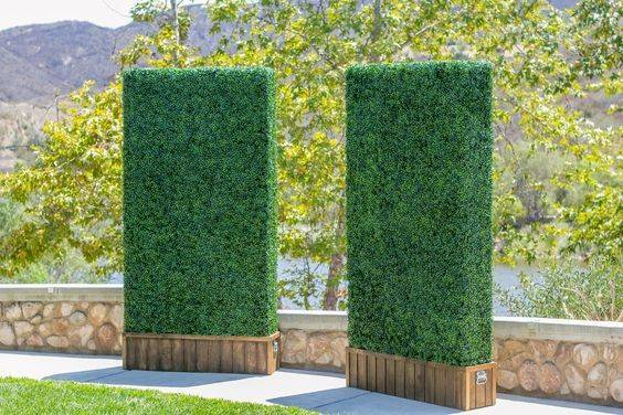 Explore Artificial Hedges Boxwood Hedge More