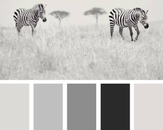 Explore Colour Palette Grey Gray Paint Colors More Color Schemes