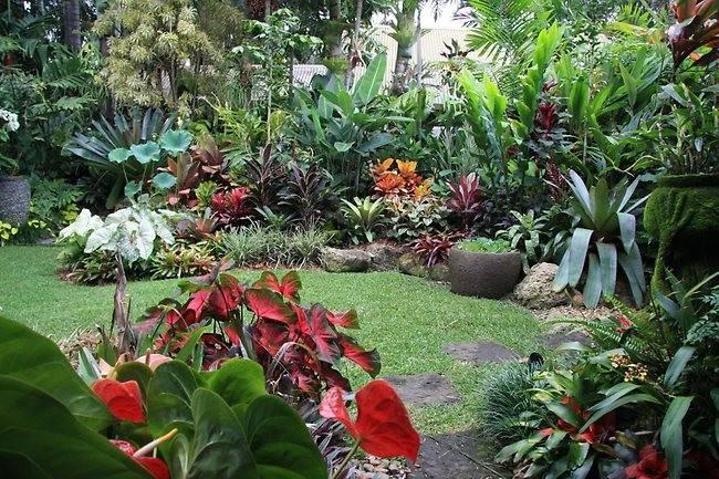 Fabulous Tropical Garden Design Ideas Perth Exactly Inspiration