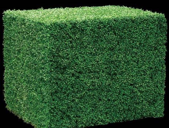 Fake Hedges Faux Boxwood Hedge