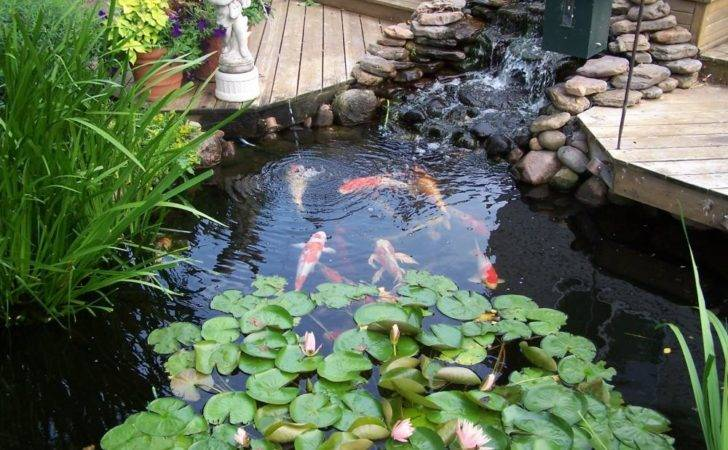 Featured Creating Outdoor Sanctuary Your Yard