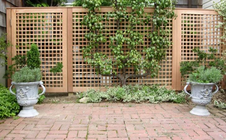 Fence Decoration Garden Plants Ideas Outdoor Decorations