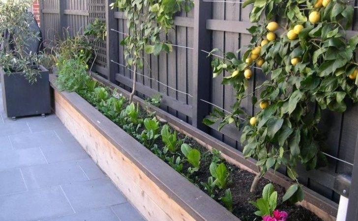 Fence Line Garden Office Pinterest