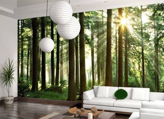 Feng Shui Living Room Color