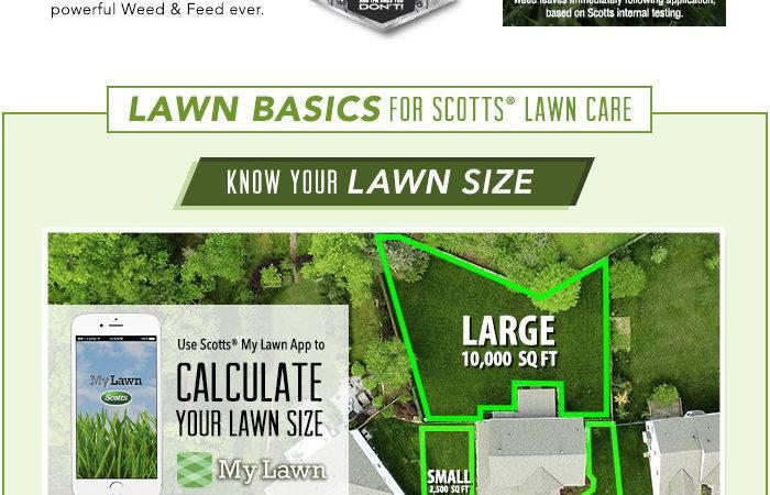 Fertilizer Plus Weed Control Home Depot